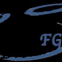 F.gDrone